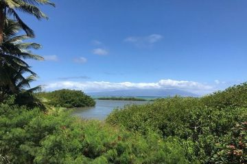 Fine Oceanfront Homes For Sale In Maui Hawaii Real Estate Home Interior And Landscaping Ologienasavecom